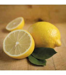 AE Limón